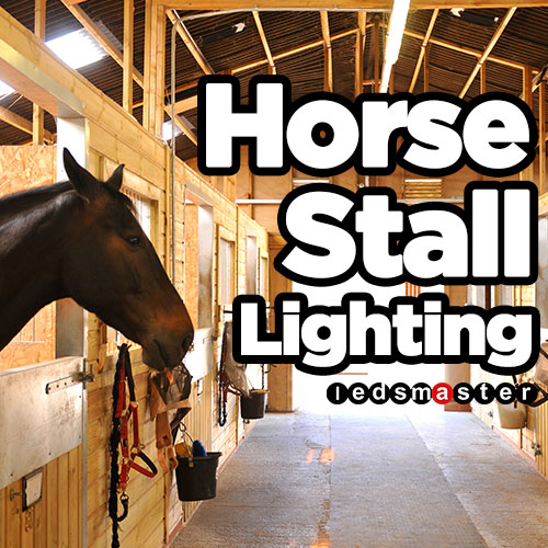 Lighting For Horse Stall Barn Aisle And Stables